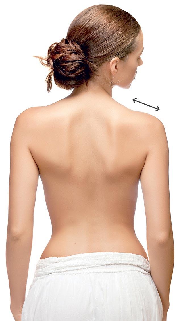 Complexión del hombro Lattoflex